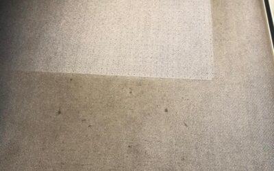 Teppichbodengrundreinigung
